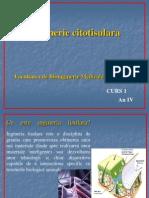 Curs 1b-Inginerie Citotisulara
