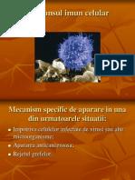 Raspunsul Imun Celular