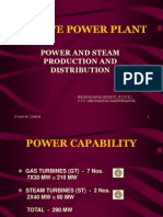 Captive Power Plant