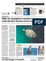 Miles de ejemplares marinos mueren cada año por basura en los océanos