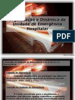 2_1 Organização e Dinâmica da Unidade de Emergência Hospitalar
