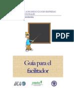 Guía_para_facilitador