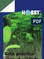 Guía Práctica para el Cuidado de Plantas y la Eliminación de Algas