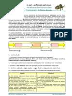 Sistema Nervoso - Ficha 1