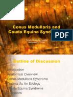 Conus Medullaris and Cauda Equina Syndromes