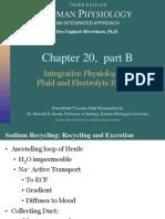 Acid Base Basic Physiology_lect[1]
