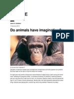Do Animals Have Imagination