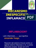 Clase Semana 7 Inflamacion