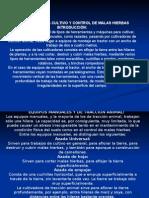 041112 Trujillo Cultivador -230310 Tema #11.-A.-maquinaria Para Labores de Cultivo