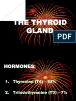 2311517 Thyroid Gland