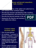 3729020 16 Back Spinal Cord