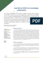 Situacion Actual de La Cox-2 en La Oncologia Veterinaria