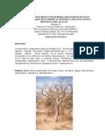 Potencial Fitofarmaco Del Palo Santo