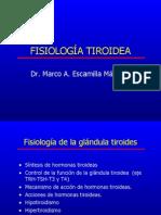4. Hiper e Hipotiroidismo