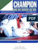 Les Techniques Du Succès Au Sol - Flamand Et Gibert
