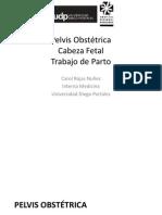 Pelvis - Cabeza - TP