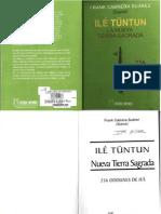 Libro Tratato 256 Oddun de Ifa Frank Cabrerea Ile Tuntun