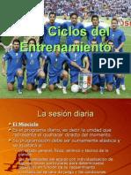 Ciclos Del Entrenamiento