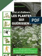 Les Plantes Qui Gu%C3%A9rissent