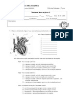 Teste Cardiovascular