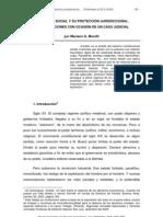 La justicia social y su protección jurisdiccional. Consideraciones con ocasión de un caso judicial (Mariano Morelli)