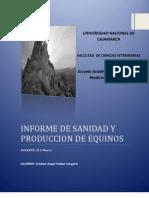 Informe de Sanidad y Produccion de Equinos