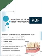Tumores Estromales Del Intestino Delgado