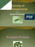 Diversity of Microorganisms 2