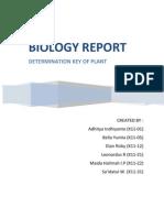 Determination Key of Plant