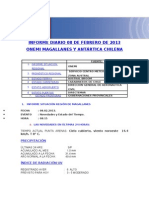 Informe Diario Onemi Magallanes 08.02.2013
