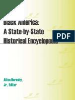 Black Amerikkka Encyclopedia