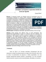 2011 - Redin - Caracterização, estratégias e percepções na agricultura familiar