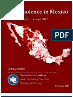 Trans-Border Institute Report