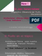 La  Escabiosis Prurito en el Trópico La Gran Imitadora.pptx