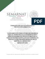 Lineamientos UMAS o PIMVS 2013.pdf