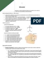 Lp 01 - ECG Normal 1