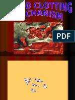 Sub 1.3 - Blood Clot Mechanism