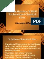 25254809 Functional Fibers
