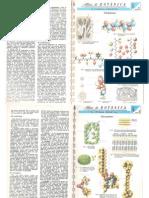 Atlas de Botânica, de Thomas-Domenech