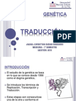 Genética – Traducción