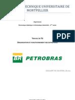 Travail de Organization Et Fonctionament d'Entreprises - PETROBRAS - GOULART de OLIVEIRA, BRUNO