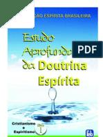 Estudo Aprofundado da Doutrina Espírita - Cristianismo e Espiritismo (FEB)