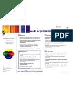 Audit Organisationnel 0607