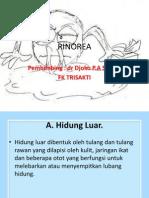 powerpoint referat RINOREA