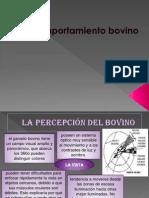 COMPORTAMIENTO_BOVINO