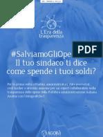 Report Trasparenza Feb2013