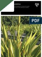 Landscape Guideline