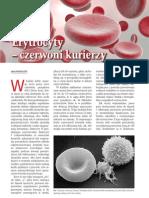 8205500302_chemiawszkole_01_2013_artykul[1]