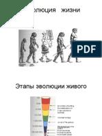 Эволюция   жизни2