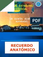 5.-Canal Estrecho Cervical